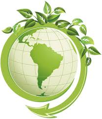 Eco Friendly Green Living Tips